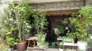 kashinoki1407291